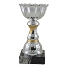 Κύπελλο NS 80-1